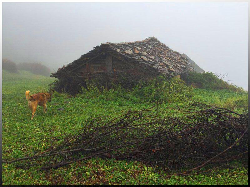 کلبه های روستای فیلبند