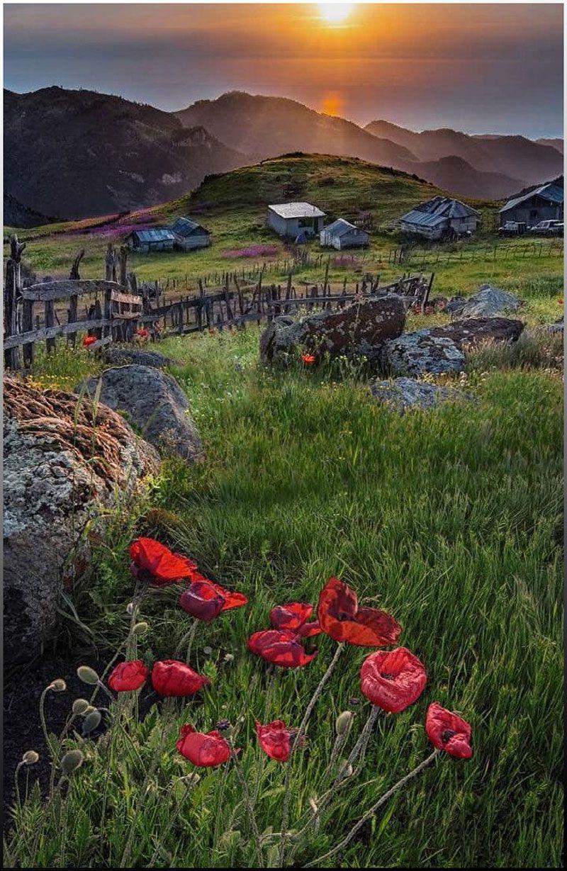 روستای ورزان